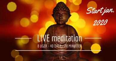 Vind et online kursus i mindfulness!