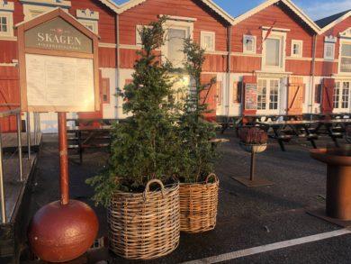 Juletur til Skagen